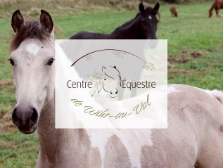 Logo «centre équestre de Wihr-au-Val»